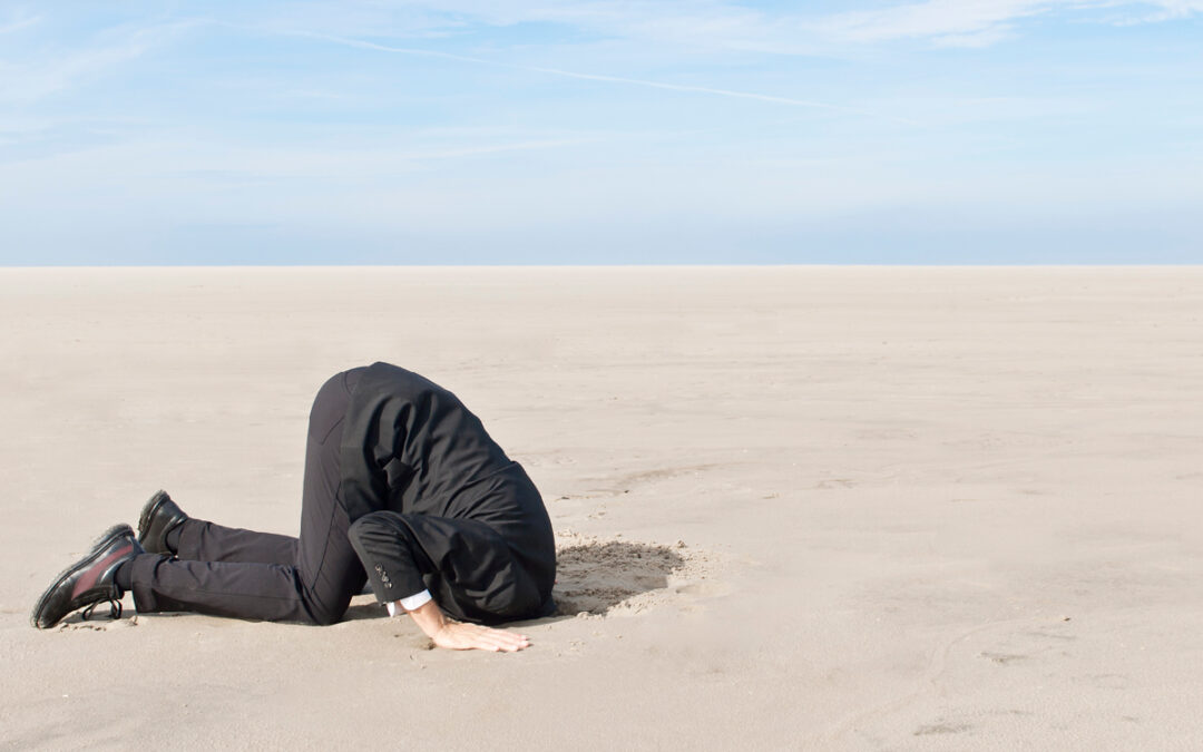 Head in sand – not a leadership position!